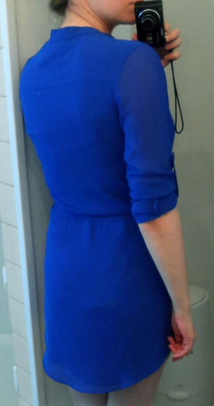 naked zebra bright blue shirt dress back