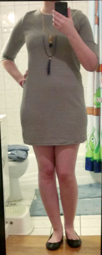 everly striped long sleeve minidress