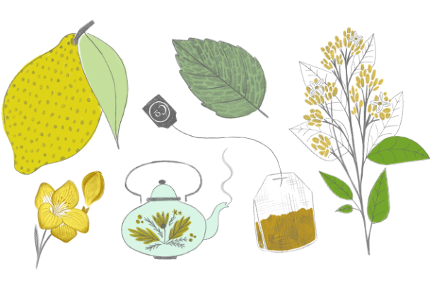 commodity perfume tea illustration